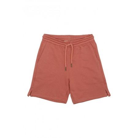 Soft Gallery Alisdair Shorts, Baked Clay 2Y (Shorts)