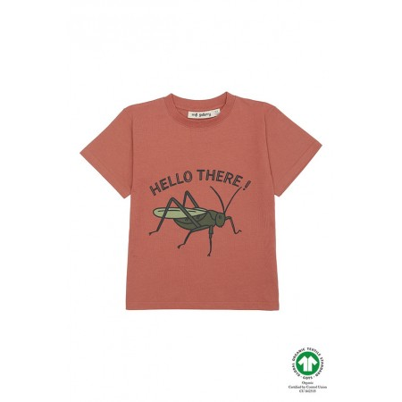 Soft Gallery Asger T-shirt, Baked Clay, Grasshopper 4Y