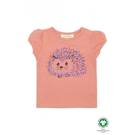 Soft Gallery Frannie T-shirt, Tawny Orange, Hedgy 6M (Blouses)