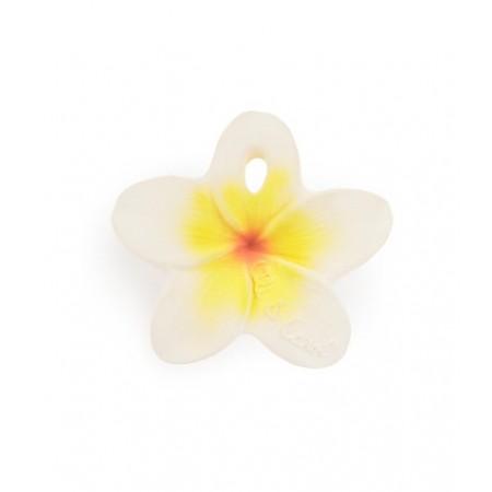 Oli&Carol Hawaii The Flower